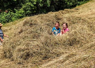 Kmetija na Čendavš